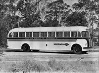Austin bus in Cairns.jpg