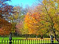 Autumn Colors at the Governor's Residence - panoramio.jpg