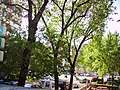 Avenida de la Ilustración - panoramio.jpg