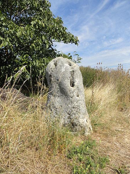 Le menhir de Haute-Borne, vu du sud.
