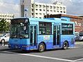 Azuma Okinawa228F 0145.JPG