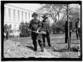 BACON, AUGUSTUS OCTAVIUS. SENATOR FROM GEORGIA, 1895-1914. LEFT, PLANTING TREE AT CAPITOL LCCN2016863714.jpg