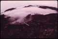 BURNED CLEAR-CUT AREA ON THE PEAK SOUTH OF DUSK POINT IN OLYMPIC NATIONAL TIMBERLAND, WASHINGTON. NEAR OLYMPIC... - NARA - 555087.tif