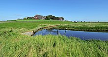 Backenswarft, Hallig Hooge, Germany.jpg