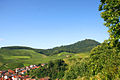 Baden-Baden Rebland.jpg