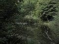 Banat,Nera Canyon - panoramio (30).jpg