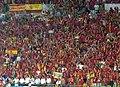 BanderaIslaCristinaEurocopa2008.jpg