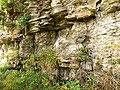 Base of Raven Crag - geograph.org.uk - 1535682.jpg