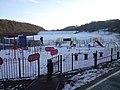 Bathpool Park - geograph.org.uk - 1481382.jpg
