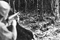 Battle of Slater's Knoll April 1945 (AWM image 090360).jpg