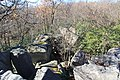 Bauchman Rocks - panoramio (1).jpg