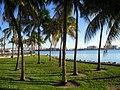 Bayfront Park, Miami, FL - IMG 7998.JPG