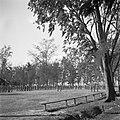 Beëdiging van de militairen Cordesius en Walraven tot 1ste luitenant in kamp Mo…, Bestanddeelnr 255-8289.jpg
