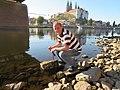 Bearbeiten und verlegen eines Hungersteines in der Elbe bei Meißen.jpg