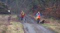 Beaters with dogs on a driven hunt Sweden 01.png