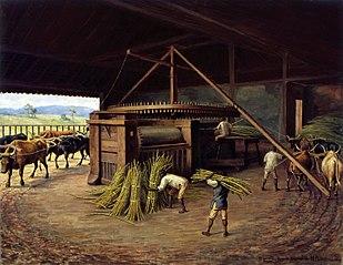 Moagem de Cana - Fazenda Cachoeira - Campinas, 1830