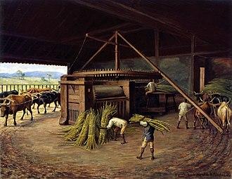 Benedito Calixto - Image: Benedito Calixto de Jesus Moagem de Cana Fazenda Cachoeira Campinas, 1830, Acervo do Museu Paulista da USP