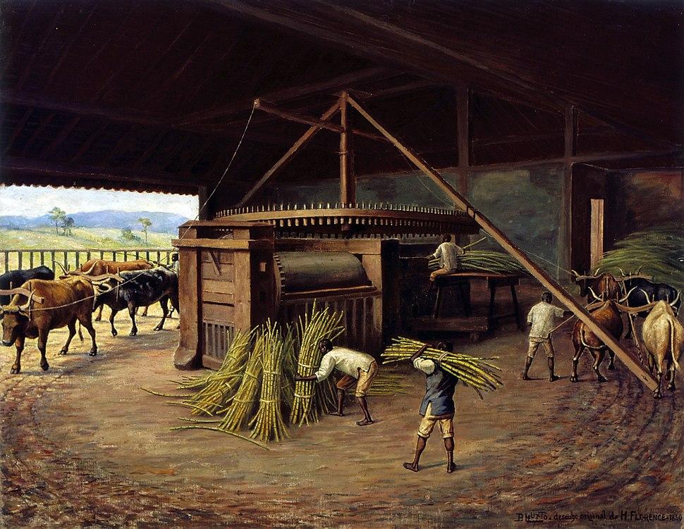 Benedito Calixto de Jesus - Moagem de Cana - Fazenda Cachoeira - Campinas, 1830, Acervo do Museu Paulista da USP