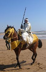 Berber horseman proudly showing off horse and traditional attire on the beach of Essaouia, Morocco.jpg
