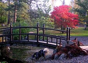 Bergianska trädgården - Image: Bergianska 4