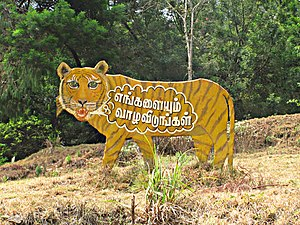 Flagship species -  Display showing the use of the tiger as the flagship species for a campaign at Berijam lake in Kodaikanal, India