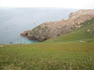 Protected areas of Portugal - The sandstone outcroppings of Berlenga Grande in the archipelago and nature reserve