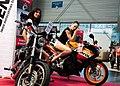 Bike Girls (65946363).jpeg