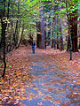 Biking in Fall (3025282627).jpg
