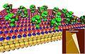 Biomimetic Functional Plastics Sense and Degrade Chem Bio Threats 131223-A-AB123-001.jpg