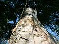 Birch bark lodge, Whitefish Island 6.JPG