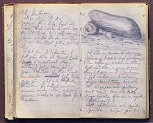 Texte manuscrit.