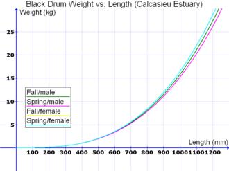 Standard weight in fish - Image: Black Drum Weight vs. Length Calcasieu Estuary metric