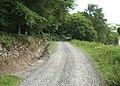 Black Park Track - geograph.org.uk - 480865.jpg