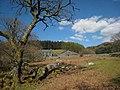 Blaen Cwm Mynach. - geograph.org.uk - 398295.jpg