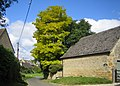 Bledington, Church Street - geograph.org.uk - 550998.jpg