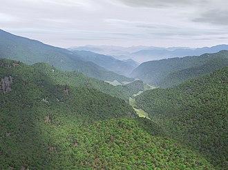 Fractal landscape - Computer-generated fractal wooded hills