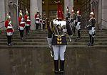 Blues and Royals Honour Guard MOD 45162439.jpg