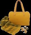 Borse ed accessori giallo.png