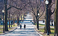 Boston Common, Massachusetts, 2 April 2011 - Flickr - PhillipC.jpg