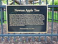 Botanical Garden, University of Wisconsin - 5.jpg