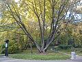 Botanical Garden Poznan xxxx (6).jpg