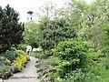 Botanischer Garten Freiburg - DSC06411.jpg
