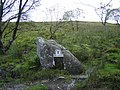 Boulder by walk to Ben Lomond - geograph.org.uk - 563558.jpg