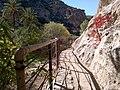 Boyce Thompson Arboretum, Superior, Arizona - panoramio (27).jpg