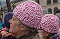 Brain Caps (34116221142).jpg
