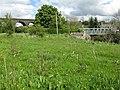 Bridges at Crawick - geograph.org.uk - 1314136.jpg