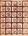 Brogi, Carlo (1850-1925) - n. 13857 - Siracusa - Museo archeologico. Monete con la testa di Filistide e la quadriga.jpg