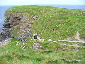 Deerness - Brough of Deerness showing foundations of an early Celtic Church monastery.
