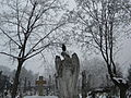 Bucuresti, Romania, Imagine hibernala cu inger si ciori, 2014 (2).JPG