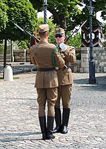 Budapest Sándor Palace Changing the Guard 2.jpg